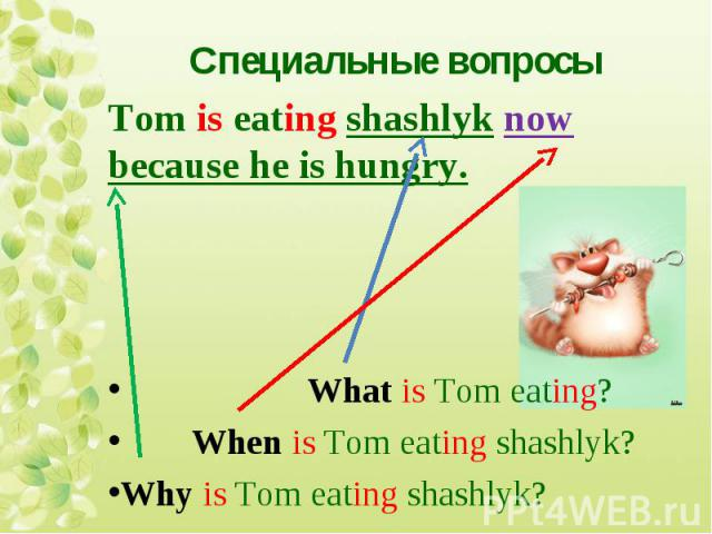 Tom is eating shashlyk now because he is hungry. Tom is eating shashlyk now because he is hungry. What is Tom eating? When is Tom eating shashlyk? Why is Tom eating shashlyk?