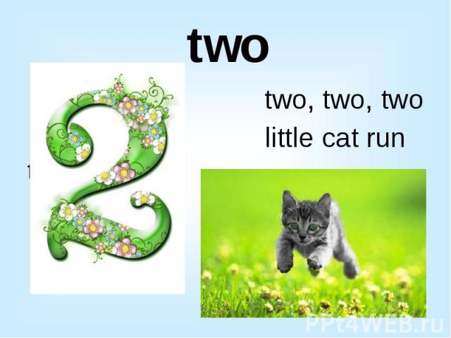 two two, two, two little cat run too