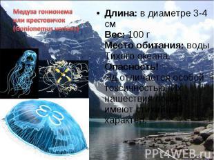 Длина: в диаметре 3-4 см Вес: 100 г Место обитания: воды Тихого океана. Опасност