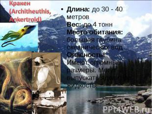 Длина: до 30 - 40 метров Вес: до 4 тонн Место обитания: большая глубина океаниче