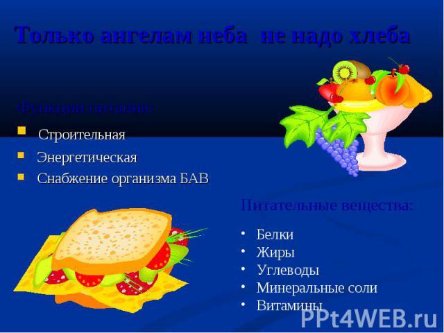 Функции питания: Функции питания: Строительная Энергетическая Снабжение организма БАВ