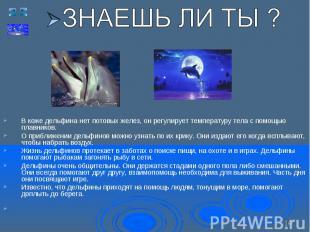 В коже дельфина нет потовых желез, он регулирует температуру тела с помощью плав