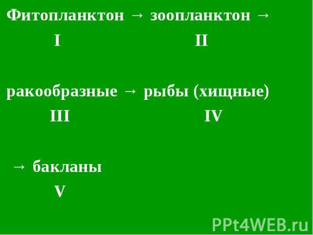 Фитопланктон → зоопланктон → Фитопланктон → зоопланктон → I II ракообразные → рыбы (хищные) III IV → бакланы V