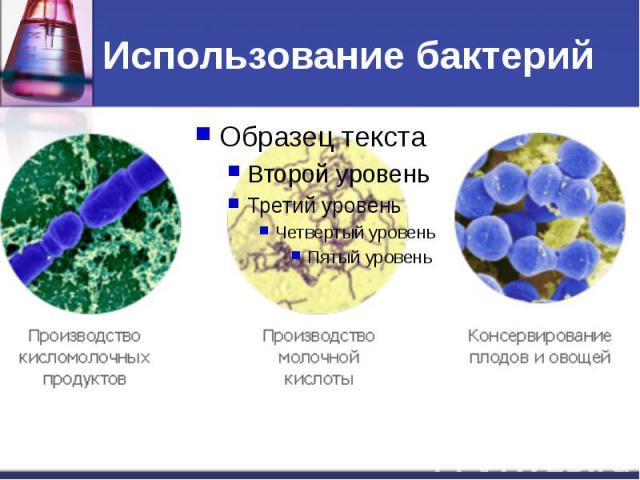 Использование бактерий