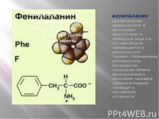 ФЕНИЛАЛАНИН, ароматическая аминокислота. В организмах присутствует в свободном виде и в составе белков; превращается в аминокислоту тирозин. Незаменимая аминокислота. Врожденное нарушение обмена фенилаланина в организме человека (фенилкетонурия) при…