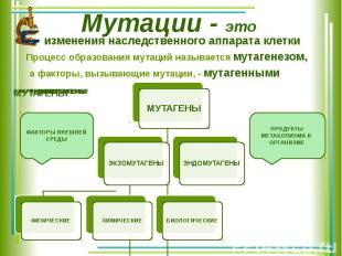 Мутации - это изменения наследственного аппарата клетки Процесс образования мута