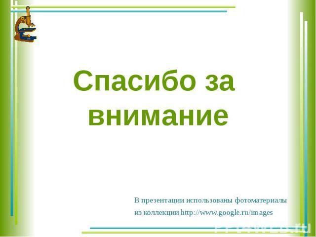 Спасибо за внимание В презентации использованы фотоматериалы из коллекции http://www.google.ru/images