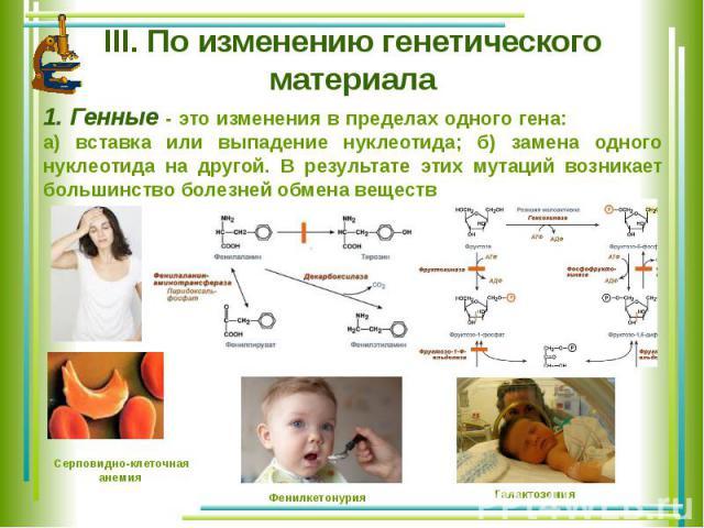 III. По изменению генетического материала 1. Генные - это изменения в пределах одного гена: а) вставка или выпадение нуклеотида; б) замена одного нуклеотида на другой. В результате этих мутаций возникает большинство болезней обмена веществ