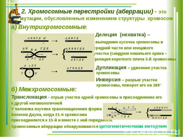 2. Хромосомные перестройки (аберрации) - это мутации, обусловленные изменением структуры хромосом а) Внутрихромосомные: Делеция (нехватка) – выпадение кусочка хромосомы в средней части или концевого участка (синдром кошачьего крика – делеция коротко…