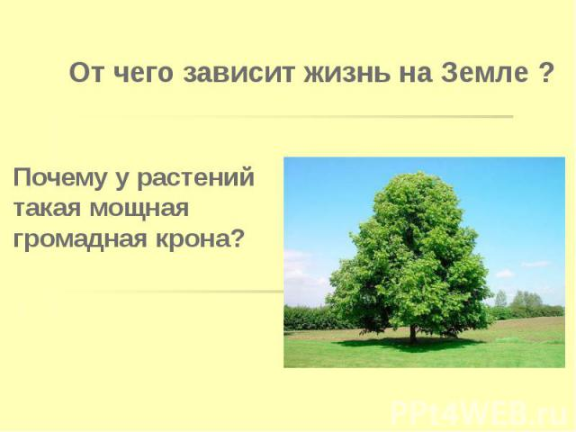 От чего зависит жизнь на Земле ?