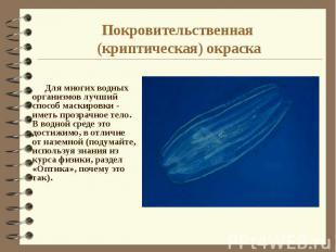 Покровительственная (криптическая) окраска Для многих водных организмов лучший с
