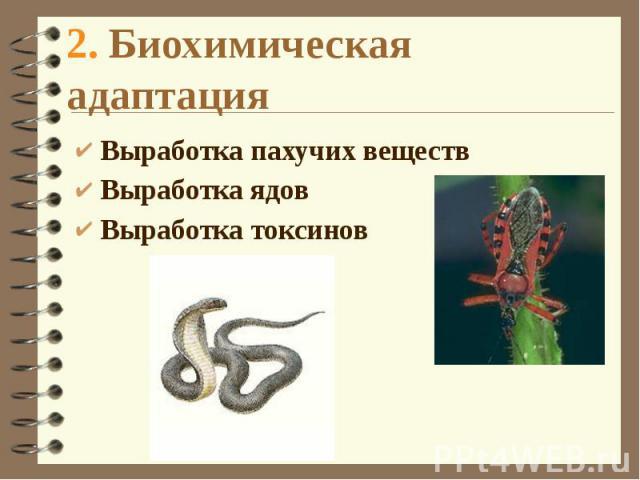2. Биохимическая адаптация Выработка пахучих веществ Выработка ядов Выработка токсинов