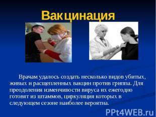 Вакцинация Врачам удалось создать несколько видов убитых, живых и расщепленных в