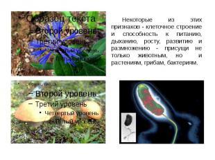 Некоторые из этих признаков - клеточное строение и способность к питанию, дыхани