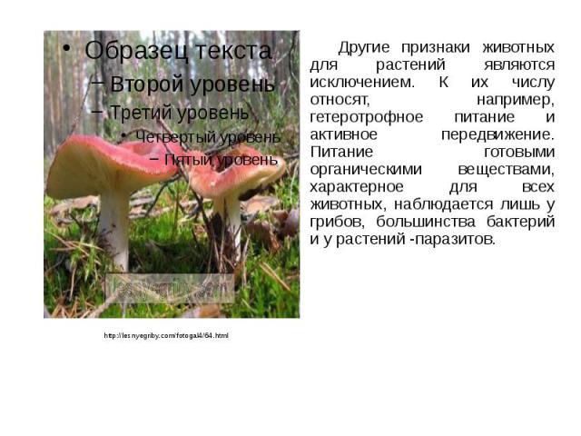 Другие признаки животных для растений являются исключением. К их числу относят, например, гетеротрофное питание и активное передвижение. Питание готовыми органическими веществами, характерное для всех животных, наблюдается лишь у грибов, большинства…