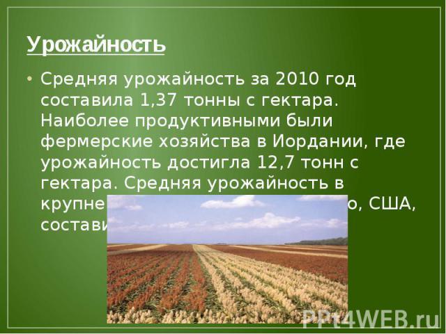 Урожайность Средняя урожайность за 2010 год составила 1,37 тонны с гектара. Наиболее продуктивными были фермерские хозяйства в Иордании, где урожайность достигла 12,7 тонн с гектара. Средняя урожайность в крупнейшем производителе сорго, США, состави…