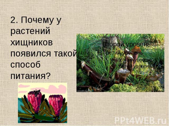 2. Почему у растений хищников появился такой способ питания? 2. Почему у растений хищников появился такой способ питания?