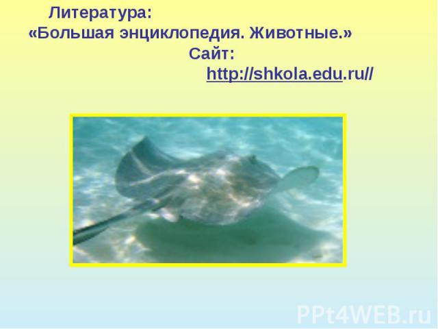 Литература: «Большая энциклопедия. Животные.» Сайт: http://shkola.edu.ru//