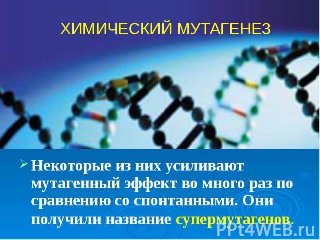 Некоторые из них усиливают мутагенный эффект во много раз по сравнению со спонтанными. Они получили название супермутагенов. Некоторые из них усиливают мутагенный эффект во много раз по сравнению со спонтанными. Они получили название супермутагенов.