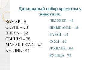 Диплоидный набор хромосом у животных. КОМАР – 6 ОКУНЬ – 28 ПЧЕЛА – 32 СВИНЬЯ – 3