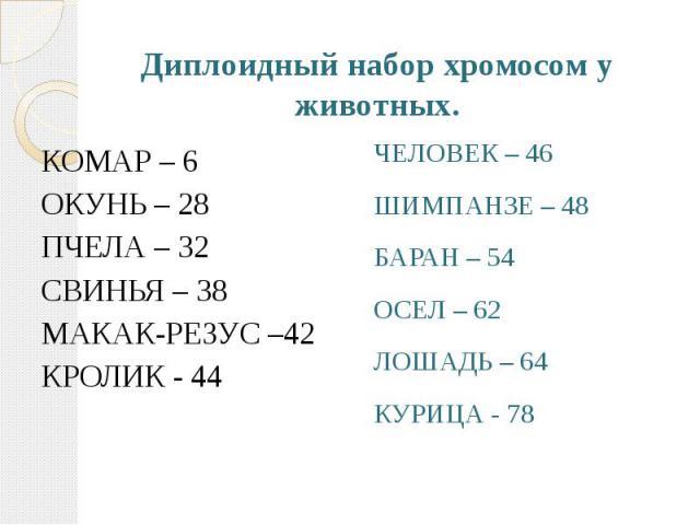 Диплоидный набор хромосом у животных. КОМАР – 6 ОКУНЬ – 28 ПЧЕЛА – 32 СВИНЬЯ – 38 МАКАК-РЕЗУС –42 КРОЛИК - 44