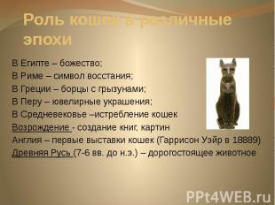 Роль кошек в различные эпохи В Египте – божество; В Риме – символ восстания; В Г