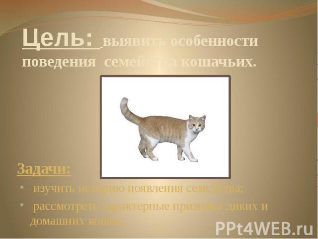 Цель: выявить особенности поведения семейства кошачьих. Задачи: изучить историю появления семейства; рассмотреть характерные признаки диких и домашних кошек.