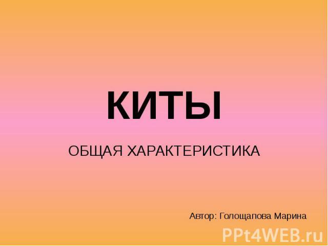 КИТЫ ОБЩАЯ ХАРАКТЕРИСТИКА