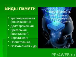 Виды памяти Кратковременная (оперативная); Долговременная; Зрительная (визуальна