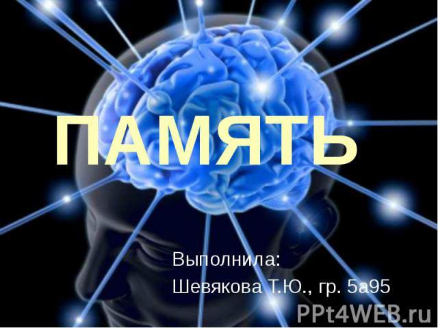ПАМЯТЬ Выполнила: Шевякова Т.Ю., гр. 5а95