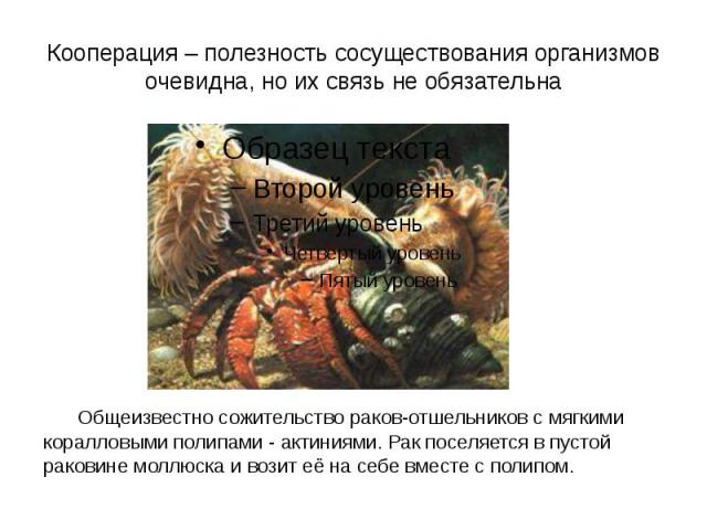 Кооперация – полезность сосуществования организмов очевидна, но их связь не обязательна Общеизвестно сожительство раков-отшельников с мягкими коралловыми полипами - актиниями. Рак поселяется в пустой раковине моллюска и возит её на себе вместе с полипом.