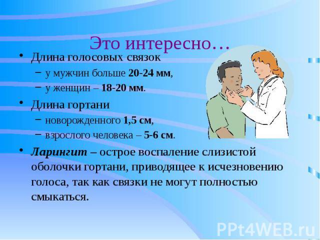 Это интересно… Длина голосовых связок у мужчин больше 20-24 мм, у женщин – 18-20 мм. Длина гортани новорожденного 1,5 см, взрослого человека – 5-6 см. Ларингит – острое воспаление слизистой оболочки гортани, приводящее к исчезновению голоса, так как…
