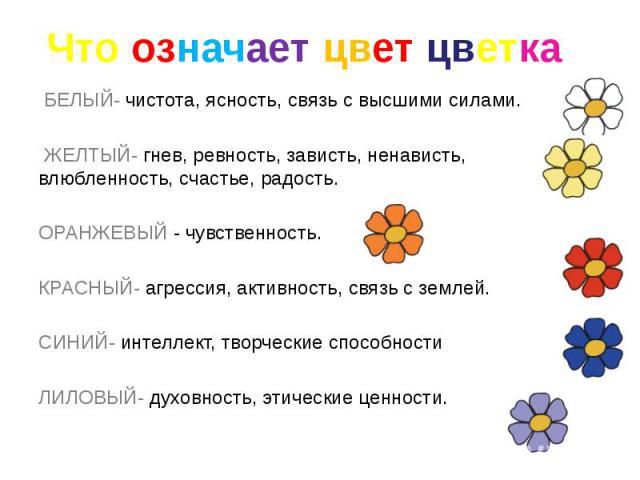 Что означает цвет цветка БЕЛЫЙ-чистота, ясность, связь с высшими силами. ЖЕЛТЫЙ-гнев, ревность, зависть, ненависть, влюбленность, счастье, радость. ОРАНЖЕВЫЙ- чувственность. КРАСНЫЙ-агрессия, активност…
