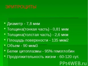 ЭРИТРОЦИТЫ Диаметр - 7,8 мкм Толщина(тонкая часть) - 0,81 мкм Толщина(толстая ча