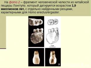 На фото 2 – фрагмент человеческой челюсти из китайской пещеры Лонггупо, который