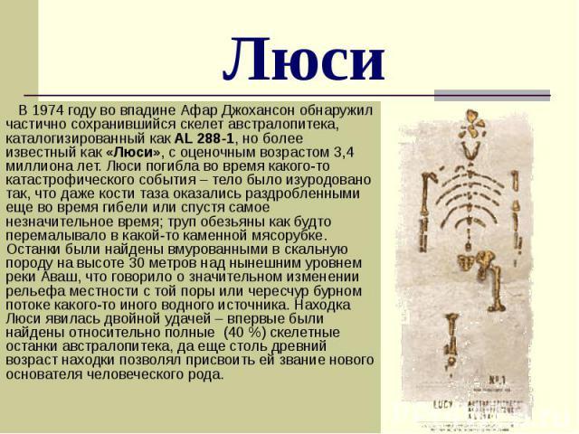 Люси В 1974 году во впадине Афар Джохансон обнаружил частично сохранившийся скелет австралопитека, каталогизированный как AL 288-1, но более известный как «Люси», с оценочным возрастом 3,4 миллиона лет. Люси погибла во время какого-то катастрофическ…