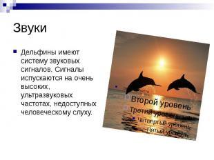 Звуки Дельфины имеют систему звуковых сигналов. Сигналы испускаются на очень выс
