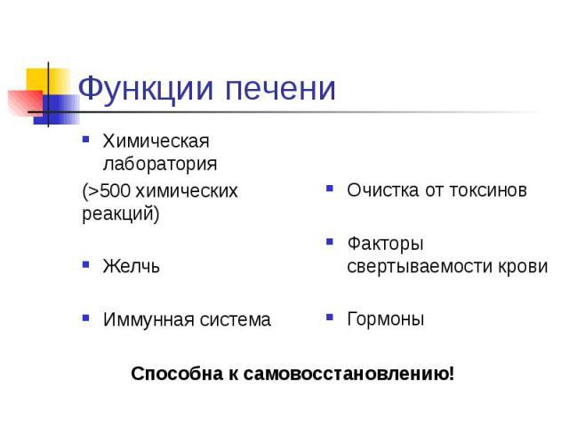 Функции печени Химическая лаборатория (>500 химических реакций) Желчь Иммунная система