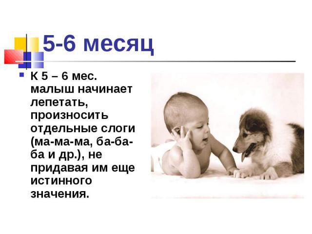 К 5 – 6 мес. малыш начинает лепетать, произносить отдельные слоги (ма-ма-ма, ба-ба-ба и др.), не придавая им еще истинного значения. К 5 – 6 мес. малыш начинает лепетать, произносить отдельные слоги (ма-ма-ма, ба-ба-ба и др.), не придавая им еще ист…