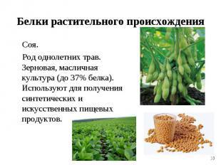 Соя. Соя. Род однолетних трав. Зерновая, масличная культура (до 37% белка). Испо