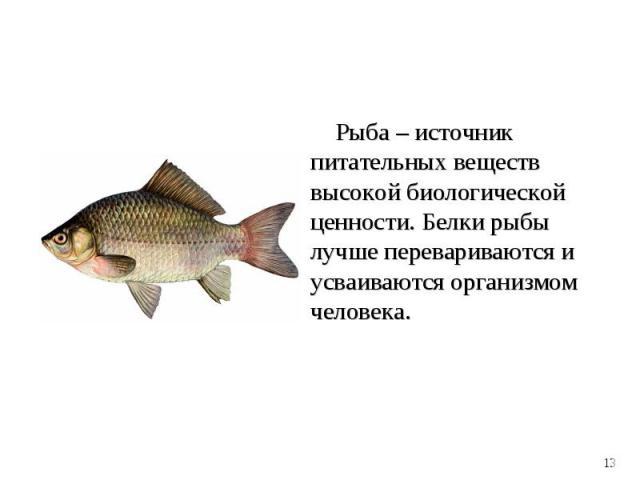 Рыба – источник питательных веществ высокой биологической ценности. Белки рыбы лучше перевариваются и усваиваются организмом человека. Рыба – источник питательных веществ высокой биологической ценности. Белки рыбы лучше перевариваются и усваиваются …