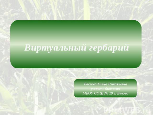 Виртуальный гербарий