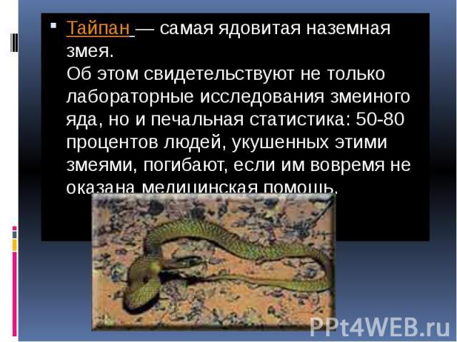 Самая ядовитая наземная змея Тайпан— самая ядовитая наземная змея. Об этом свидетельствуют не только лабораторные исследования змеиного яда, но и печальная статистика: 50-80 процентов людей, укушенных этими змеями, погибают, если им вовремя не…