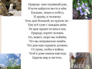 Природа- наш огромный дом, Природа- наш огромный дом, И всем найдется место в нё