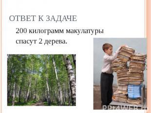 200 килограмм макулатуры 200 килограмм макулатуры спасут 2 дерева.