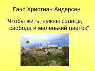 """""""Чтобы жить, нужны солнце, свобода и маленький цветок"""" """"Чтобы жить, нужны солнце"""