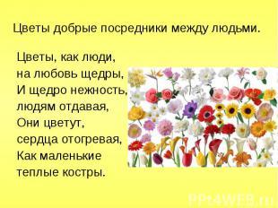 Цветы, как люди, Цветы, как люди, на любовь щедры, И щедро нежность, людям отдав