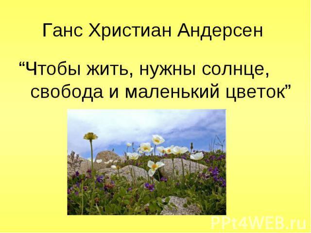 """""""Чтобы жить, нужны солнце, свобода и маленький цветок"""" """"Чтобы жить, нужны солнце, свобода и маленький цветок"""""""