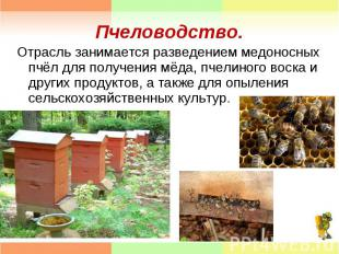 Отрасль занимается разведением медоносных пчёл для получения мёда, пчелиного вос