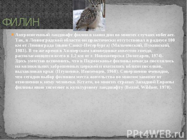 ФИЛИН Антропогенный ландшафт филин в наши дни во многих случаях избегает. Так, в Ленинградской области он практически отсутствовал в радиусе 100 км от Ленинграда (ныне Санкт-Петербурга) (Мальчевский, Пукинский, 1983). В то же время в Холперском запо…